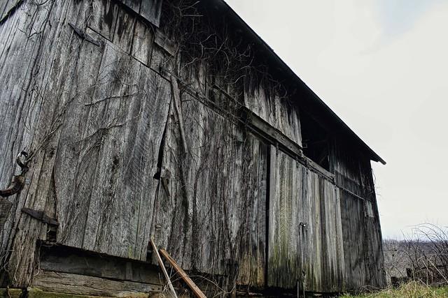 The Texture Farm