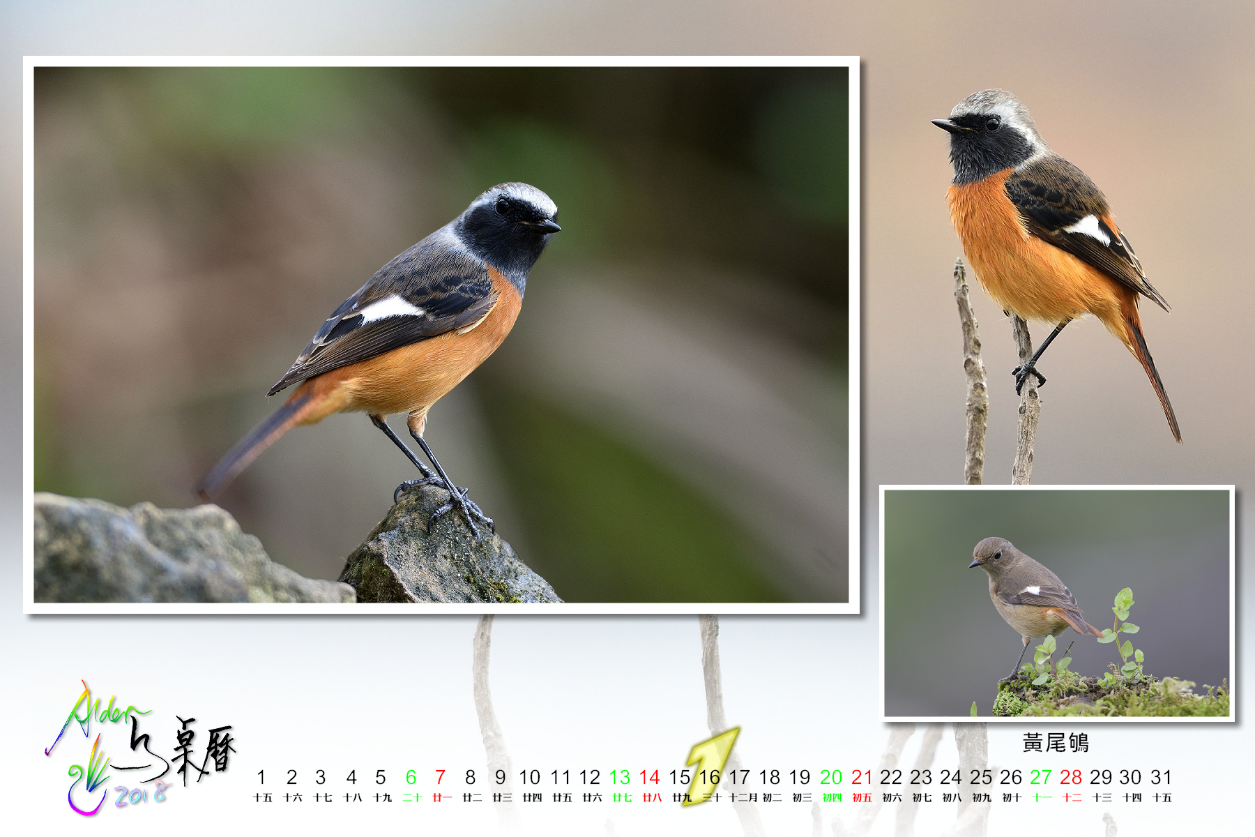 Calendar2018-002_01