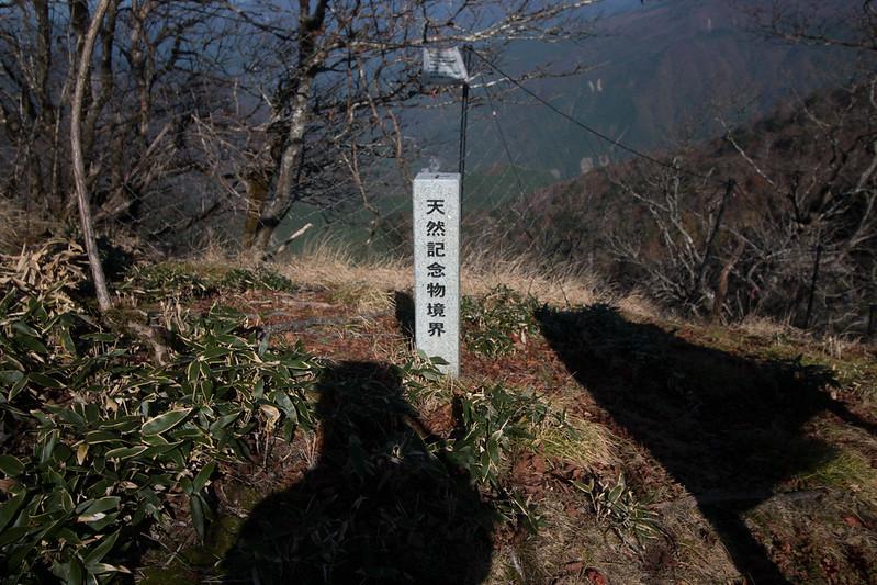 20161104_剣山三嶺_0518.jpg