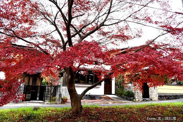 鷺森神社26