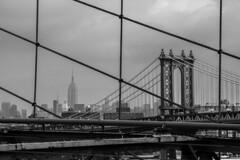 NY_brooklyn bridge and empire state