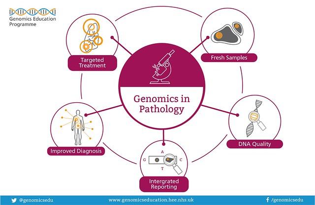 Genomics_in_ Pathology