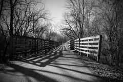 Trails In Monochrome