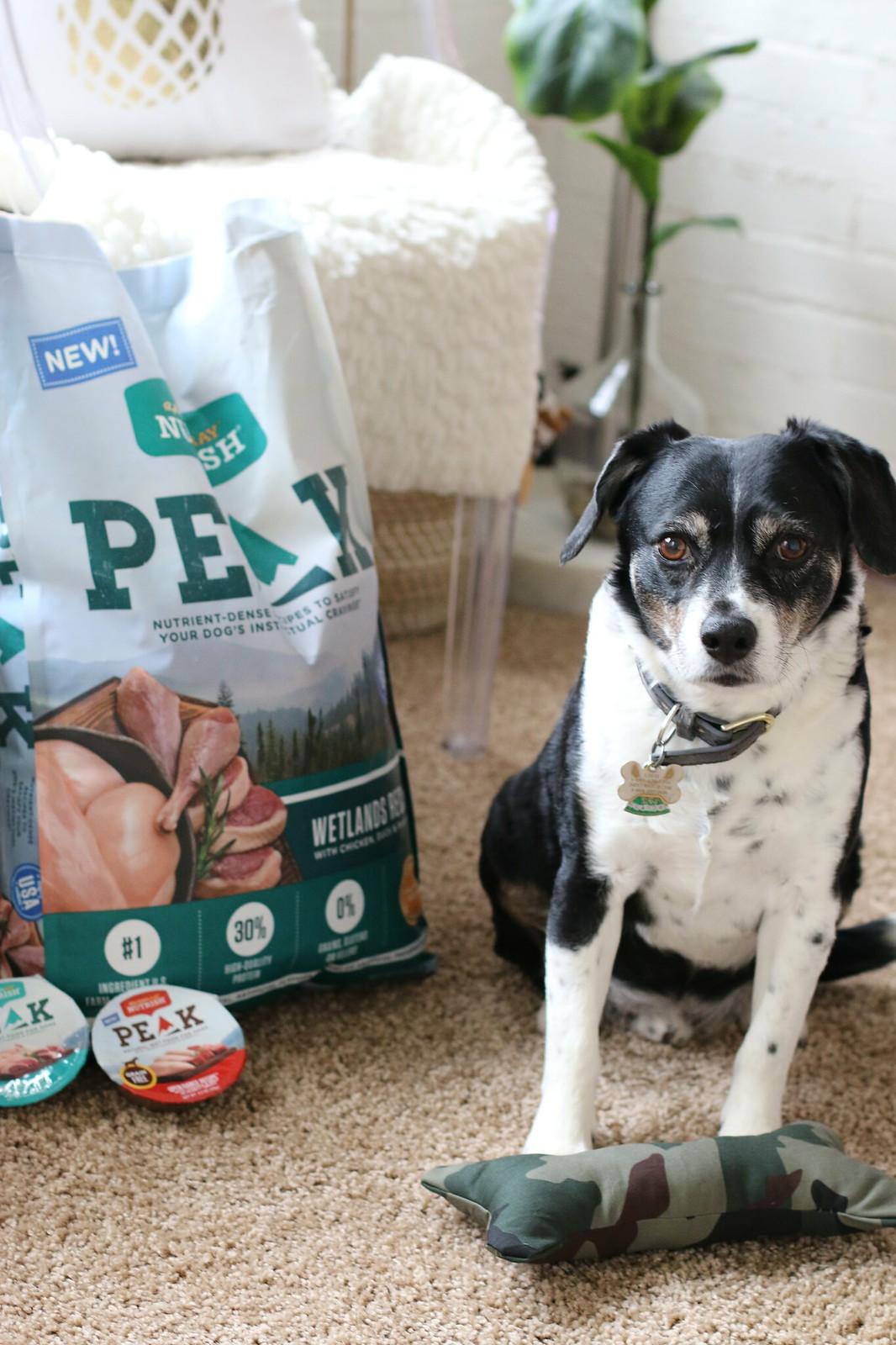 diy-dog-bone-nutrish-peak-dog-food