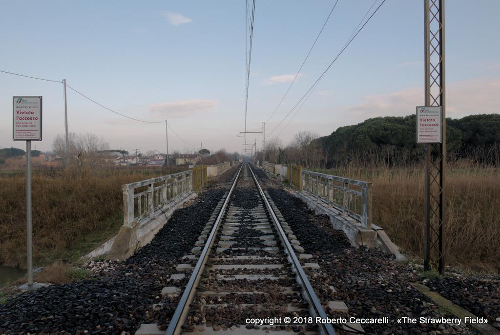 Il ponte ferroviario sul Bevano