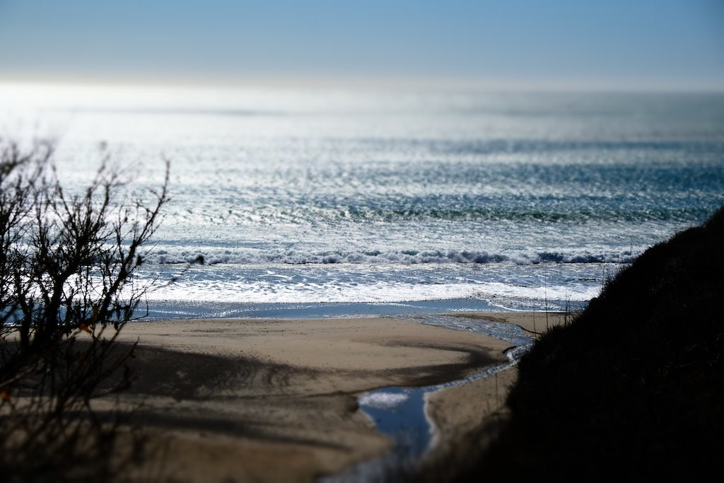 Ano Nuevo beach and ocean