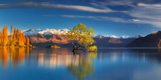 Blue and Gold | by Dylan Toh