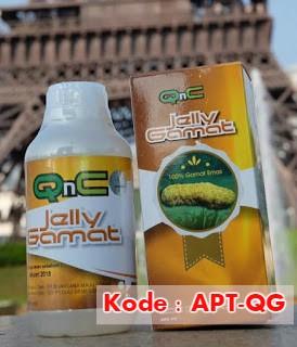 Cara Menghancurkan Batu Ginjal dengan Qnc Jelly Gamat
