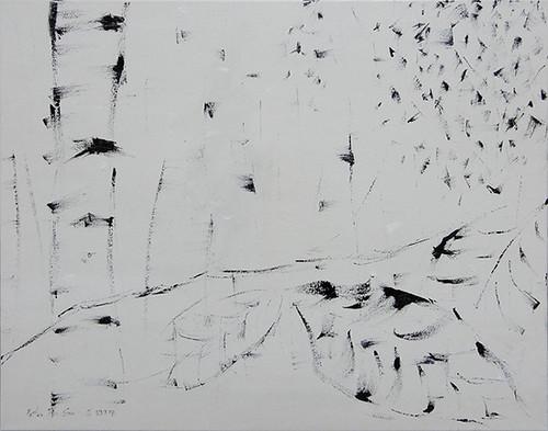 Birches / 樺樹 / Birken