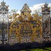 Golden garden gates