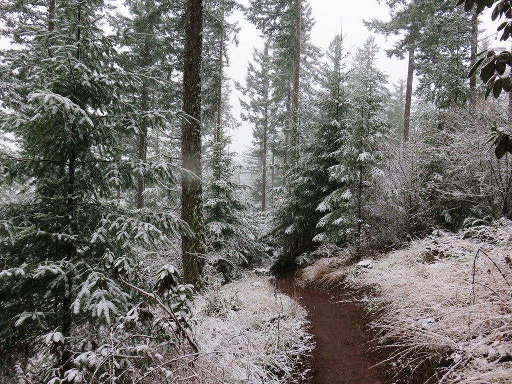 Vineyard Mountain Trail