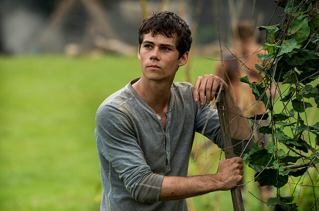 Dylan-as-Thomas-in-The-Maze-Runner-dylan-obrien-37612702-1200-1000