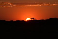 Sunset on Erindi