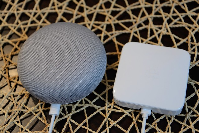 Google home mini Nature remo