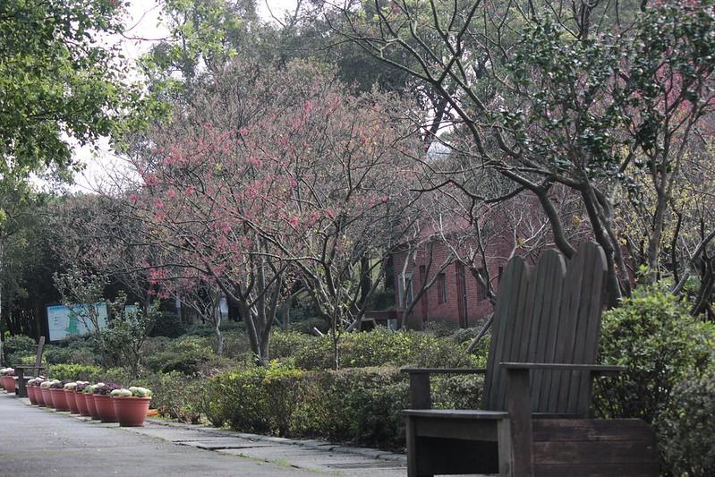 台北市花卉試驗中心 陽明山