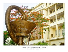 School of Pharmacy Saigon - Summer 2010