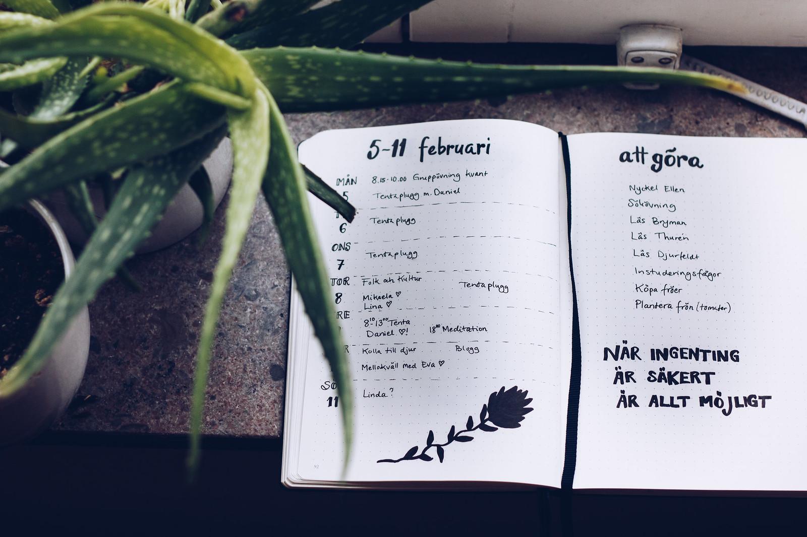 Bullet journal veckoplan nr 6 - reaktionista.se