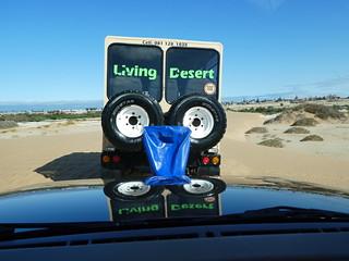 20180108 Living Desert