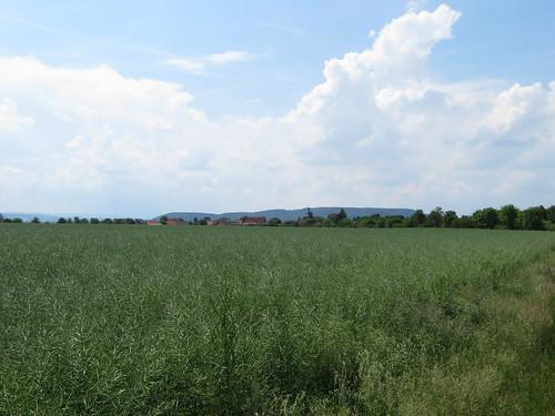 20170603 06 190 Regia Wolken Weite Feld Bäume