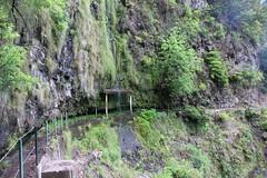 Madeira 2016 - 5.Tag,  Tal der Ribeira da Ponta do Sol