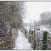 Speeding north through the snow.