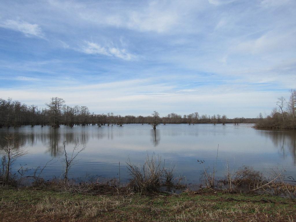 Horseshoe Lake (Alexander co.)