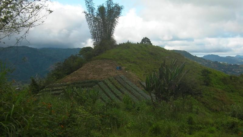 Manwel's Peak