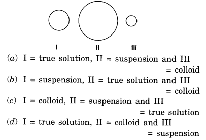 cbse-class-9-science-practical-skills-solution-colloids-suspension-5