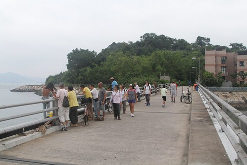 Fishing on the bridge between Peng Chau and Tai Lei