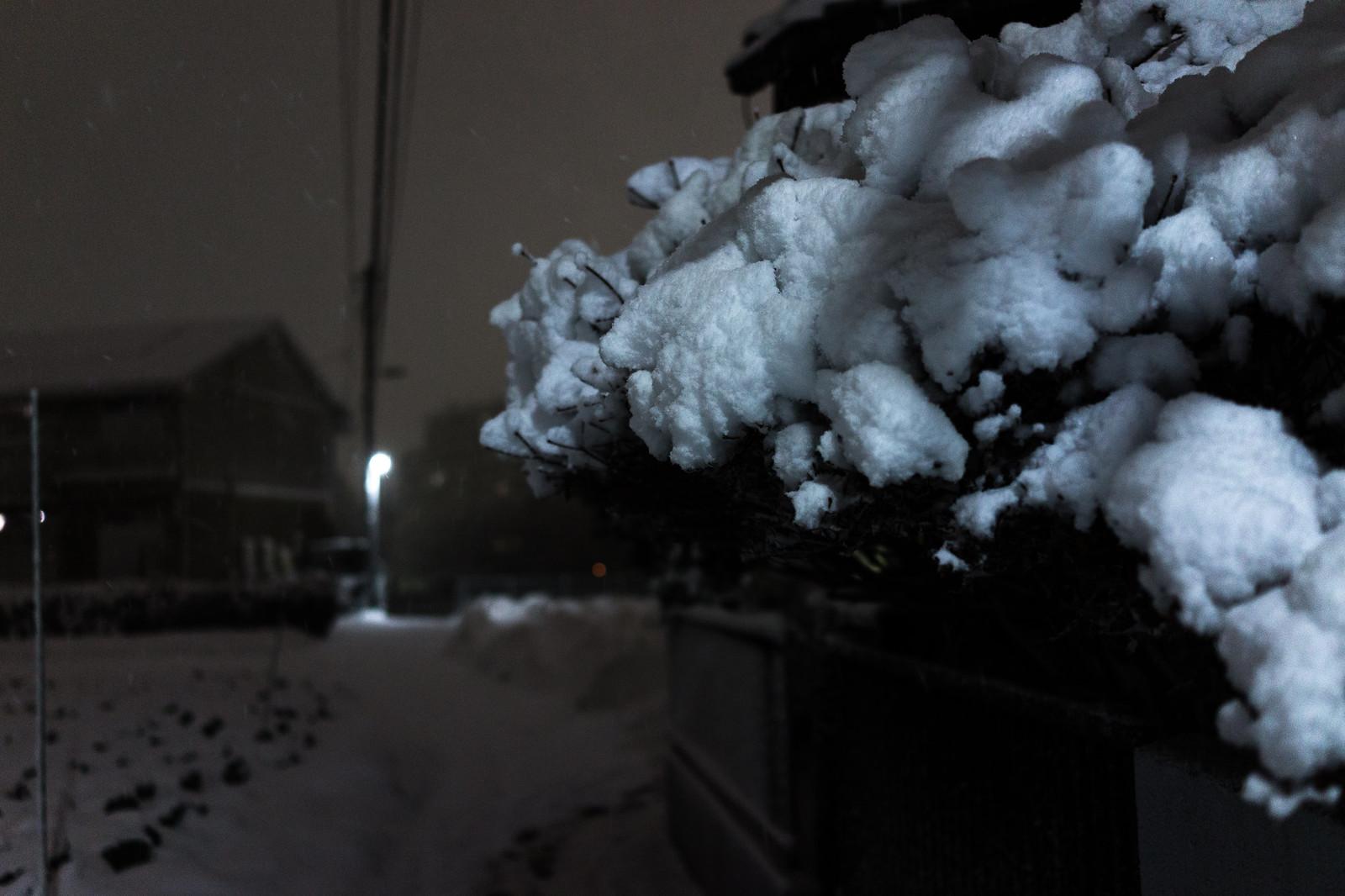 20180122 Snow_2