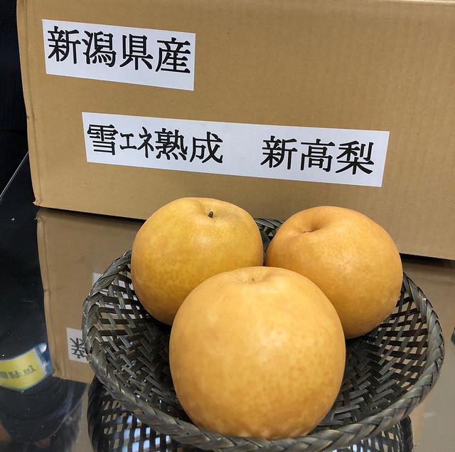豊洲市場 見学 試食