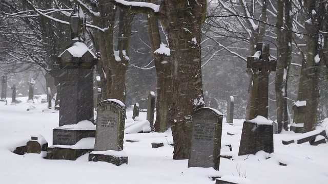 Boneyard in the snow 02