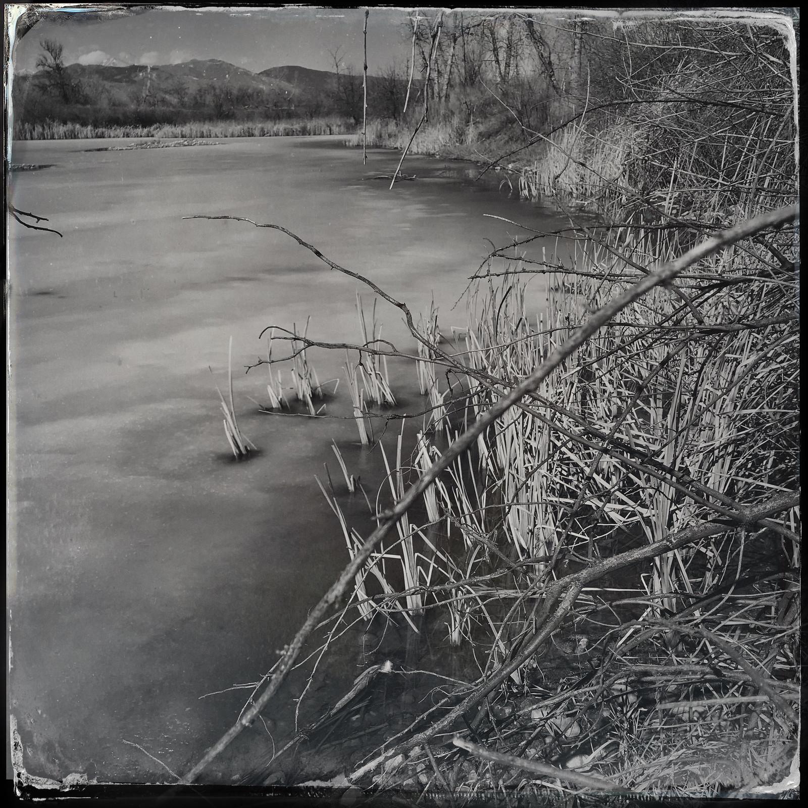 Sawhill Ponds