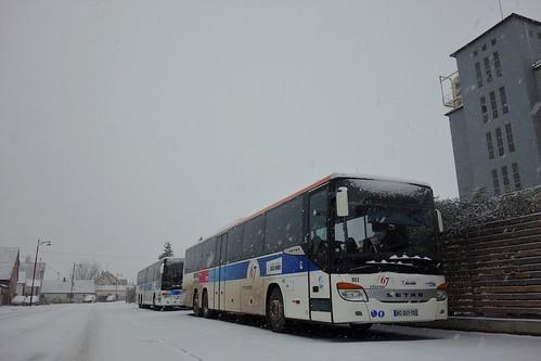 Setra S 419 UL n°903 & 901  -  Bas-Rhin, CTBR