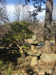 Morris Arboretum!