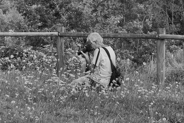 La barrière et le photographe  -HFF