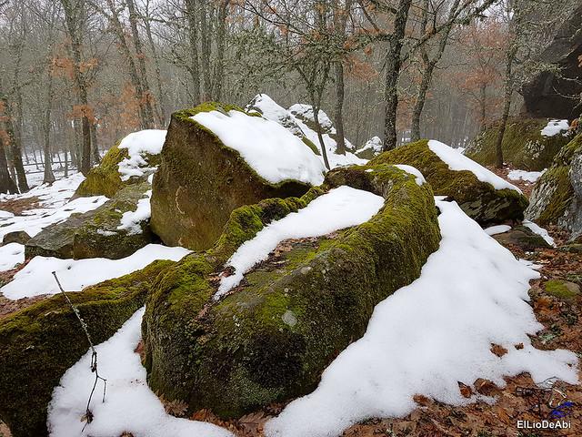 Necrópolis de Revenga y La Cerca con nieve 23