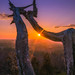 Kennesaw Mountain Sunset by Brandon Westerman WNP