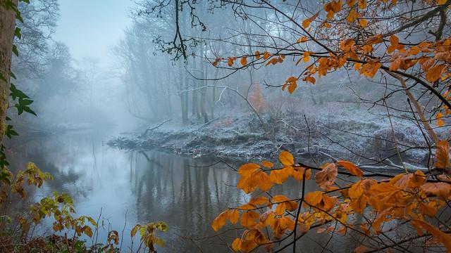 Cold Days - Warm Hearts