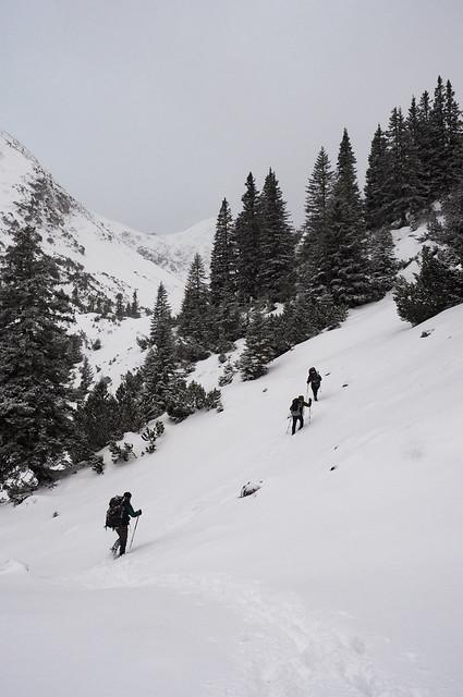 Winterwanderung 2017