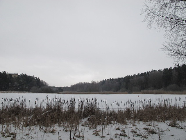 saturday, walking in grimsta nature reserve, råcksta, stockholm