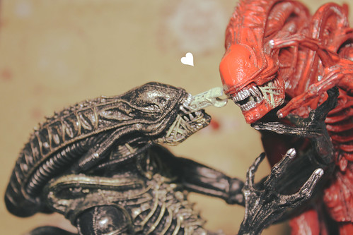 kiss your loved ones
