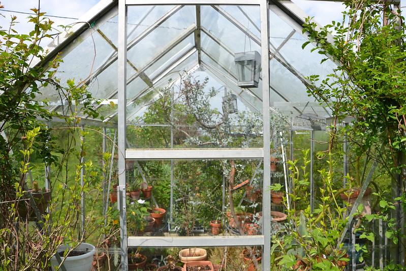 """Déficoncours """"Jardins sous verre"""" - Participations 39688719684_f3833cc70a_c"""