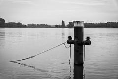 The Line - Kop van't Land, Dordrecht