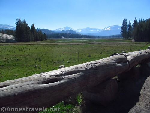 Views of Tuolumne Meadows from the parking area for Pothole Dome in Yosemite National Park, California