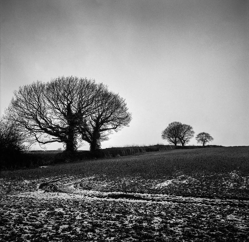 FILM - In the wintertime