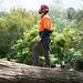 Dale Belmore Arborist