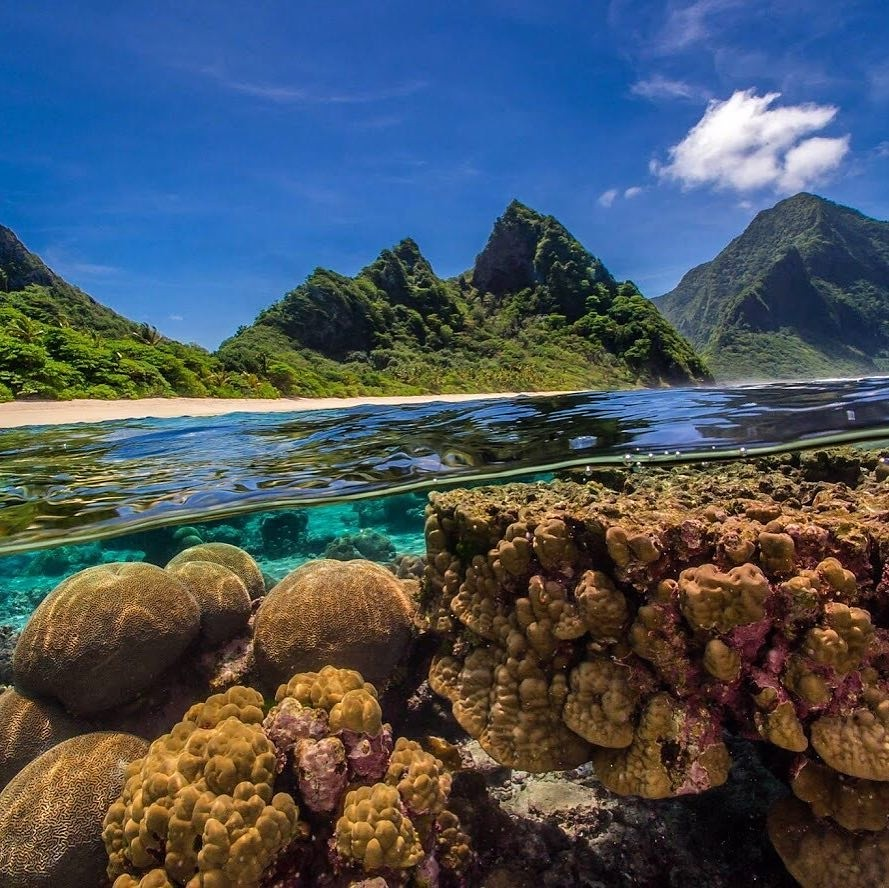 #NationalParksOfinstagram #AmericanSamoa #AmericanSamoaNationalPark #SouthPacificisland #USA💖 regram @usinterior Need a break from the cold? National Park of American Samoa is the place for you. The quintessential tropical paradise, Nati