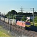 Continental Gauge Freight in the UK