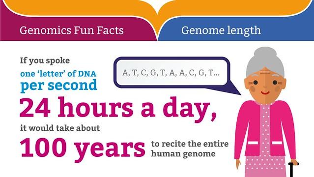 Genomics Fun Facts: Genome length